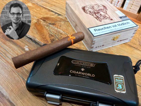 Pitbull Cigar Maestro